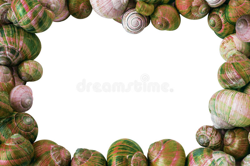 L'escargot coloré écosse le fond image libre de droits