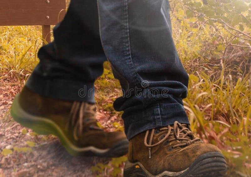 L'escursione calza la camminata nell'erba ruvida selvatica della natura royalty illustrazione gratis