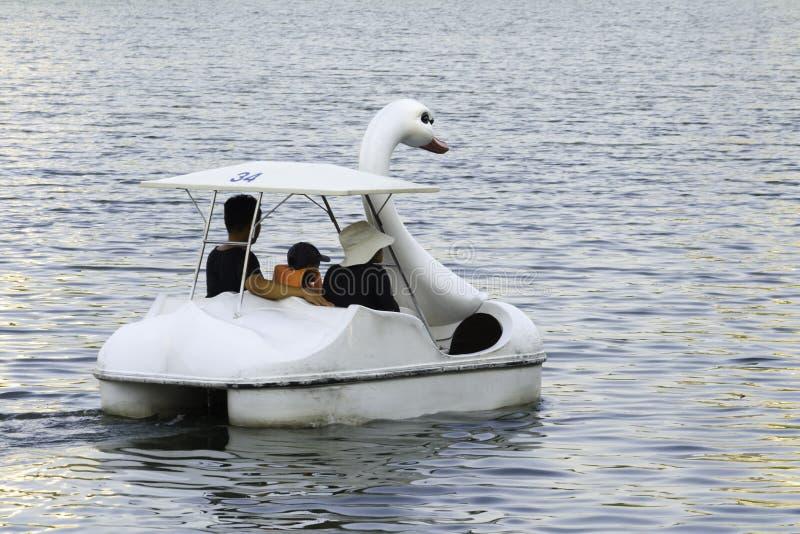 L'esercizio della famiglia, si rilassa con la barca del cigno in parco fotografia stock
