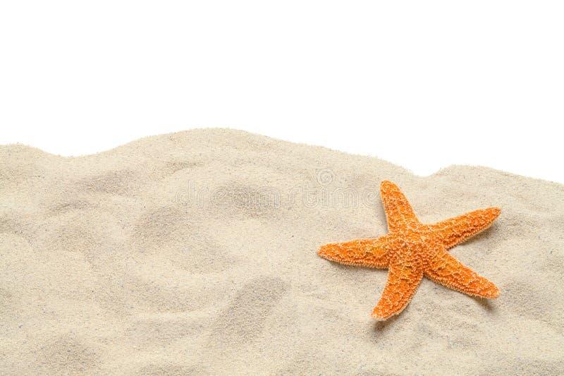 L'espace de copie d'étoiles de mer de sable photo libre de droits