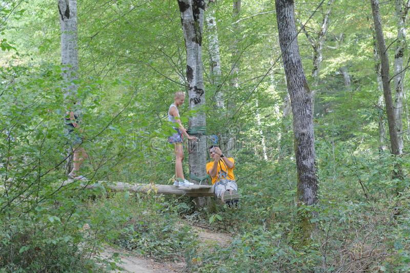 L'esperienza di zipline dell'albero immagini stock libere da diritti