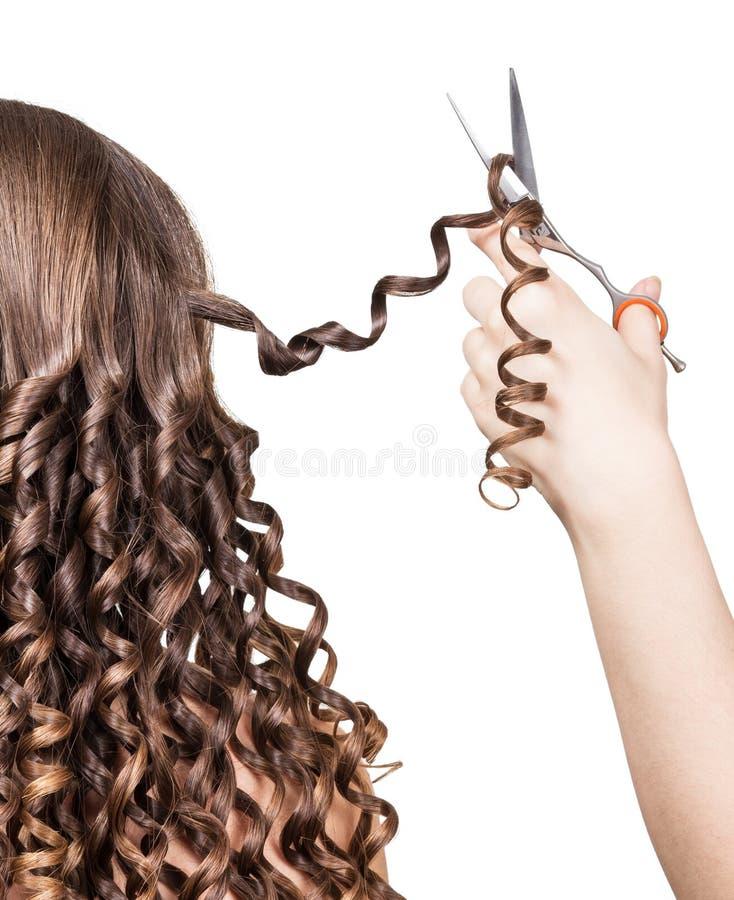 L'esperto tiene le forbici di paia e la ragazza arricciata capelli della serratura immagini stock libere da diritti