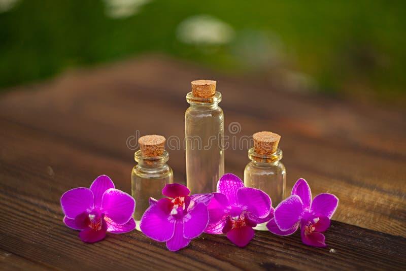 L'essence de l'orchidée fleurit sur la table dans le beau pot en verre images libres de droits