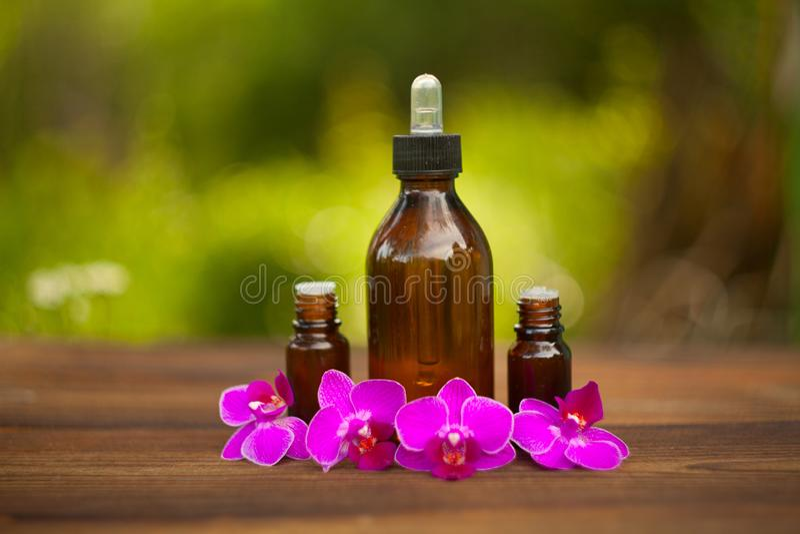L'essence de l'orchidée fleurit sur la table dans le beau pot en verre photos libres de droits