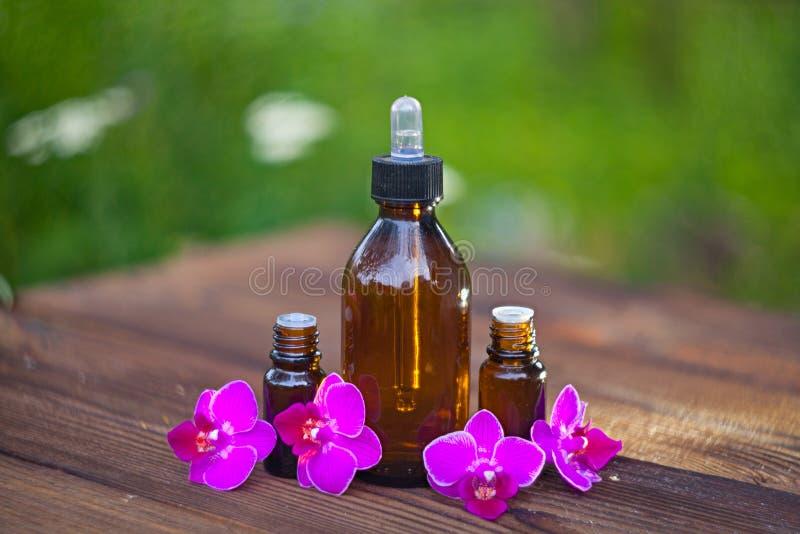 L'essence de l'orchidée fleurit sur la table dans le beau pot en verre photographie stock