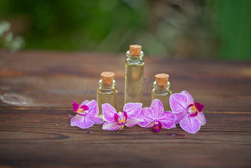 L'essence de l'orchidée fleurit sur la table dans le beau pot en verre photo stock