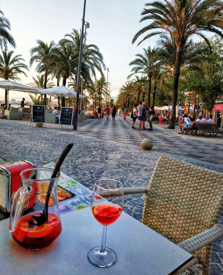 L'estate di palmtree delle bevande si rilassa il viaggio di vacanza di paradiso fotografia stock