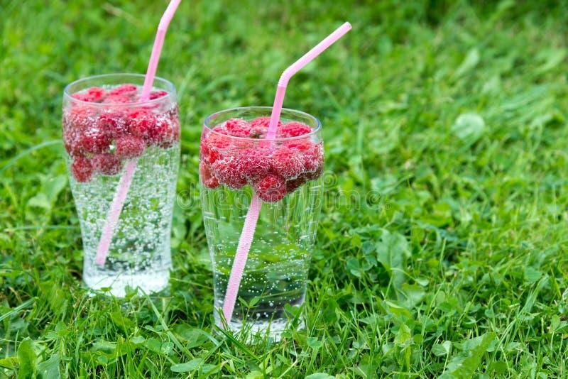 L'estate di rinfresco beve con acqua frizzante e le bacche fresche immagini stock