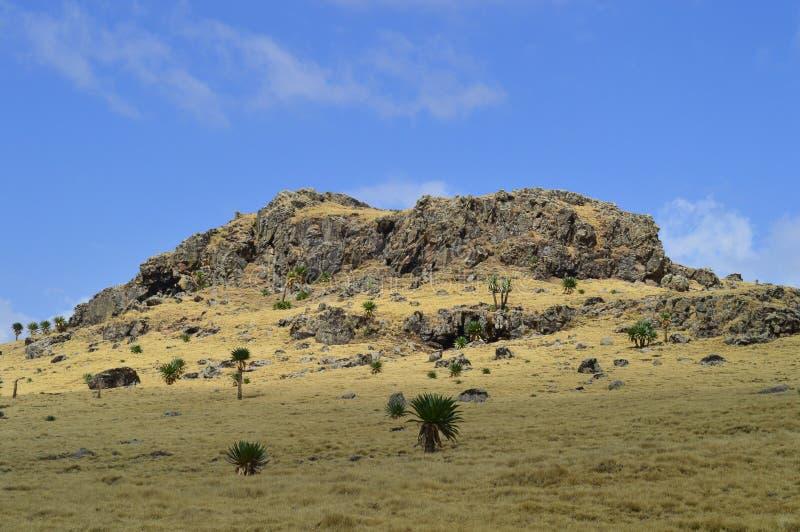 l'ethiopie R?gion d'Amhara Hausse dans les montagnes photos stock