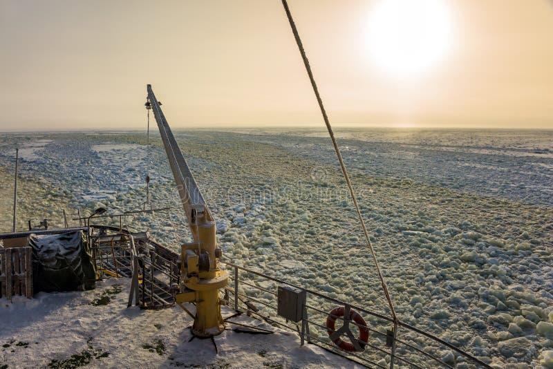 L'excursion à la croisière de touristes arctique photo stock