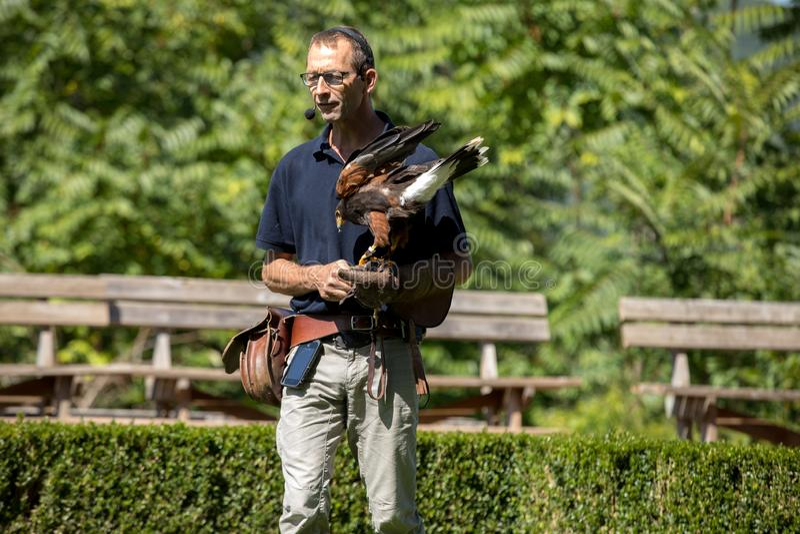 L'exposition des oiseaux de la proie à DES Milandes de château ; un château ; dans le Dordogne ; L'Aquitaine ; La France photos stock