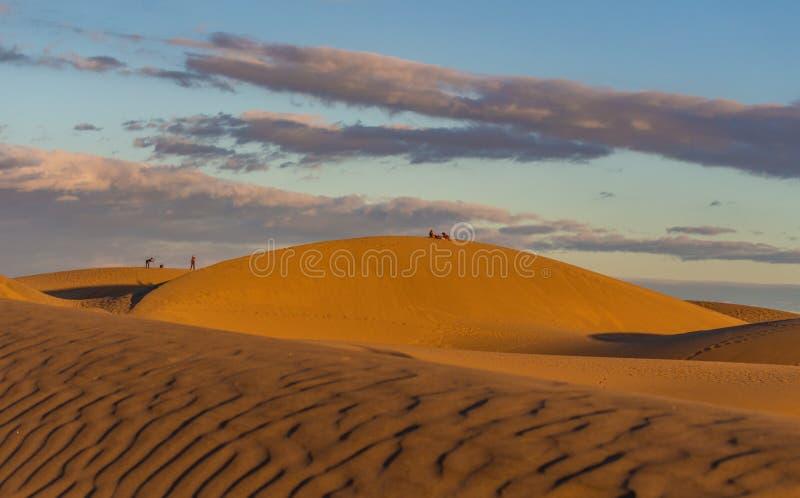 L?gen auf den W?stend?nen in Gran Canaria bei Sonnenuntergang lizenzfreies stockfoto