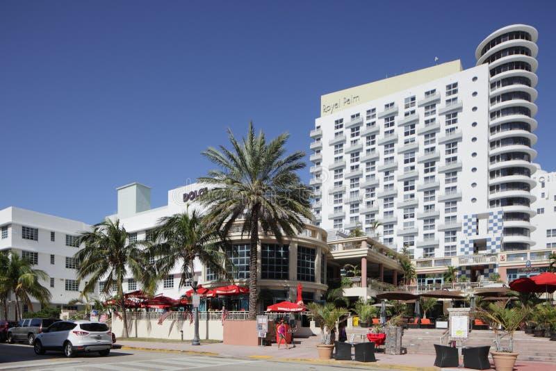 L'hôtel Miami Beach de palmier royal images libres de droits