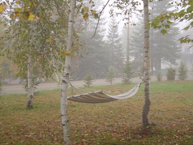 L'hamac a attaché aux arbres de bouleau dans un brouillard photos stock