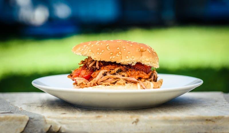 L'hamburger tirato del panino della carne di maiale è servito con il fondo della natura fotografia stock libera da diritti