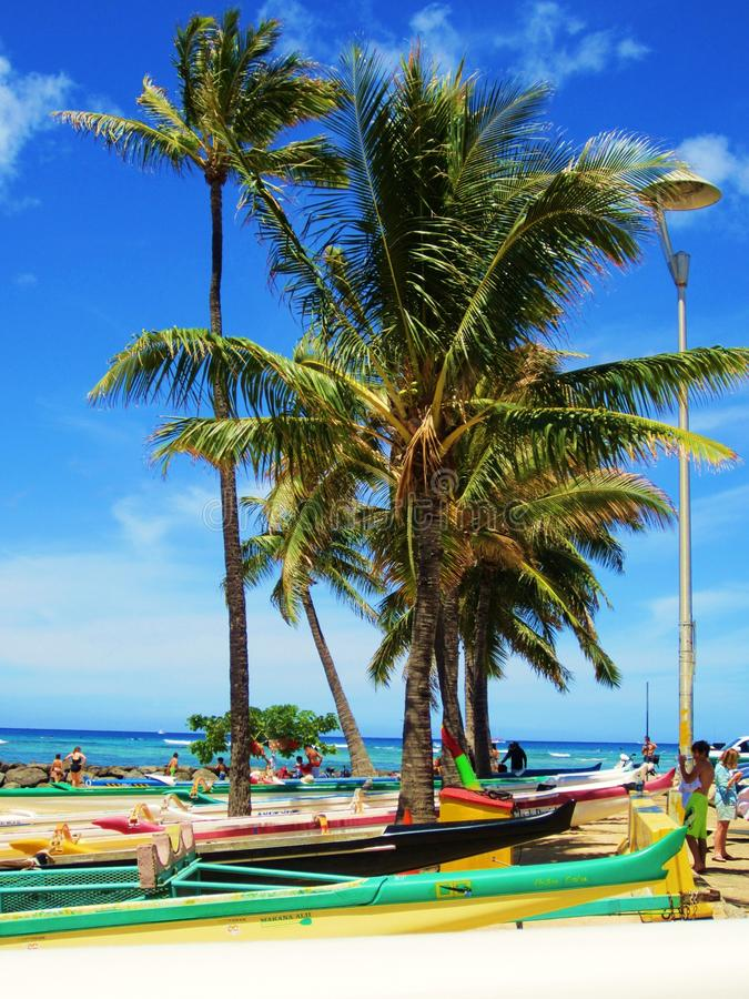 L'Hawai blu fotografia stock libera da diritti