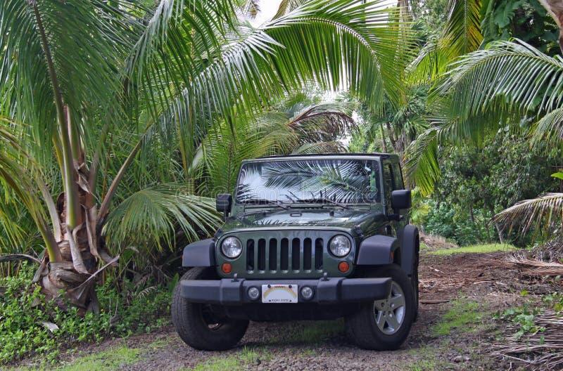 L'Hawai fuori strada fotografie stock