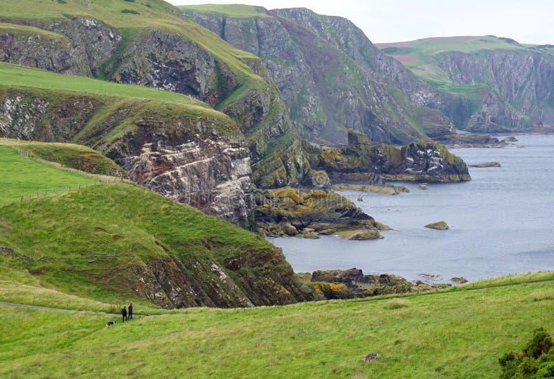 L'herbe a complété les falaises, randonneurs avec le chien, Ecosse image libre de droits