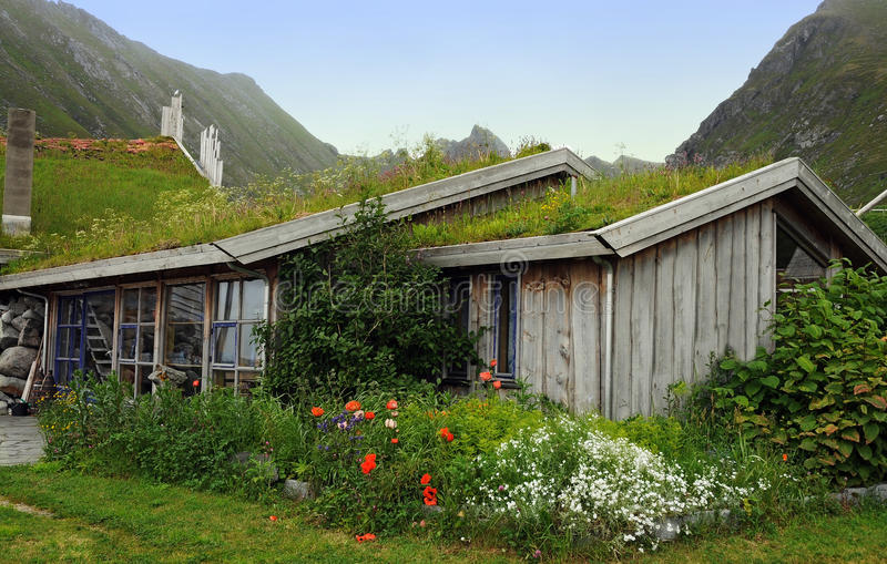 L'herbe a couvert la maison norvégienne photo stock