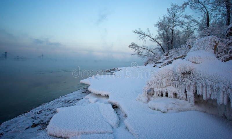 L'herbe et les arbres couverts de neige sur la berge photos libres de droits