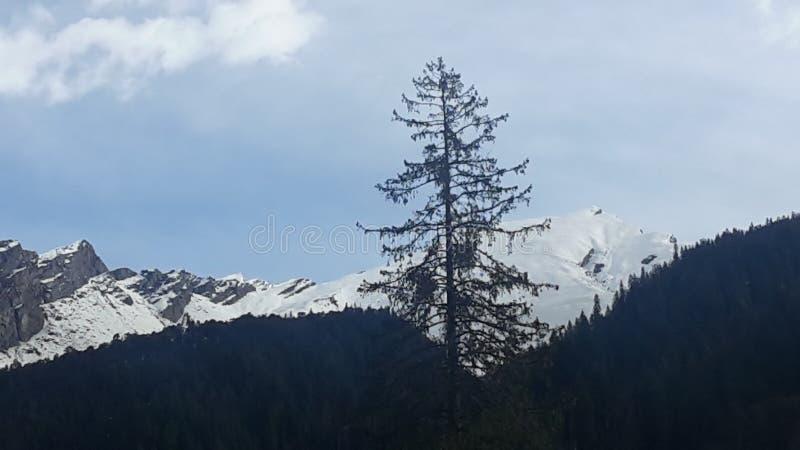 l'himalaya photo stock