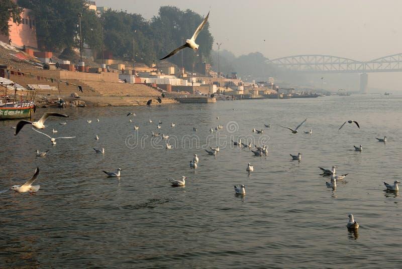 L'hiver à Varanasi photographie stock libre de droits