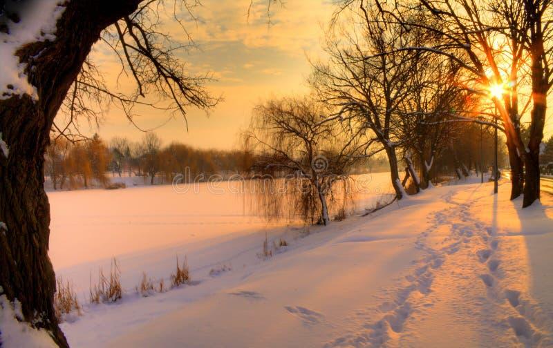 Download L'hiver image stock. Image du arbres, nuages, hiver, nature - 87700197
