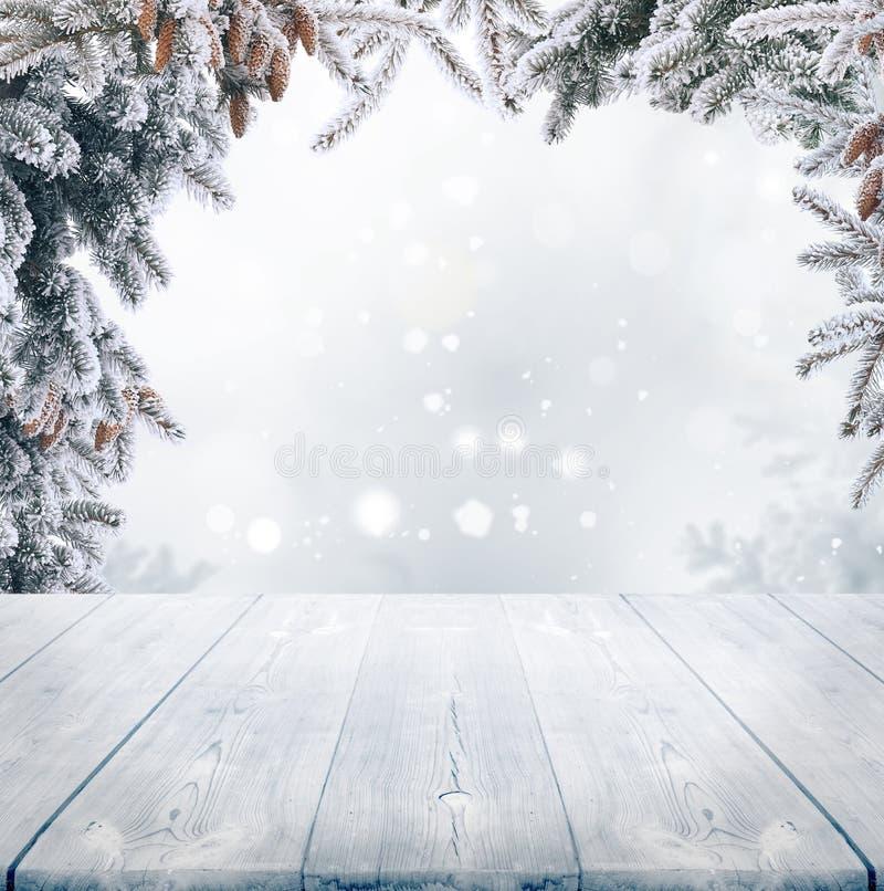 L'hiver background photographie stock libre de droits