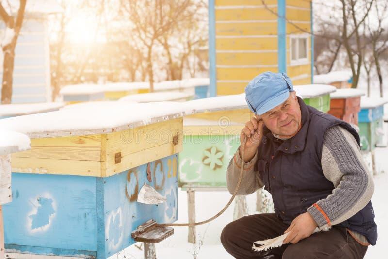 L'hiver d'apiculteur surveille le statut des abeilles dans la ruche photographie stock libre de droits