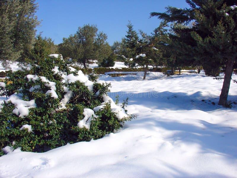 L'hiver dans la ville photos stock