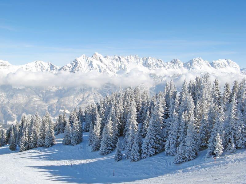 L'hiver dans les alpes photos libres de droits