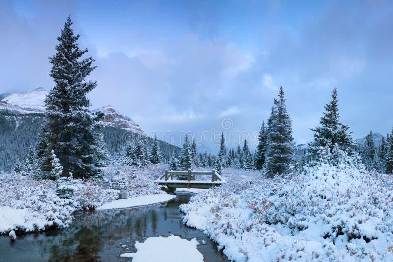 L'hiver dans les montagnes cintrent la neige d'Alberta Canada First de parc national de Banff de lac dans beau Noël de forêt image stock