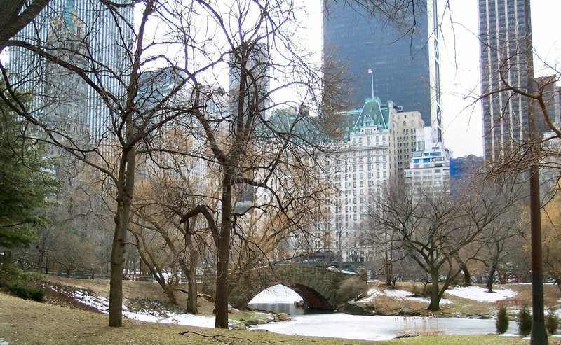 L'hiver dans NYC 2 images stock