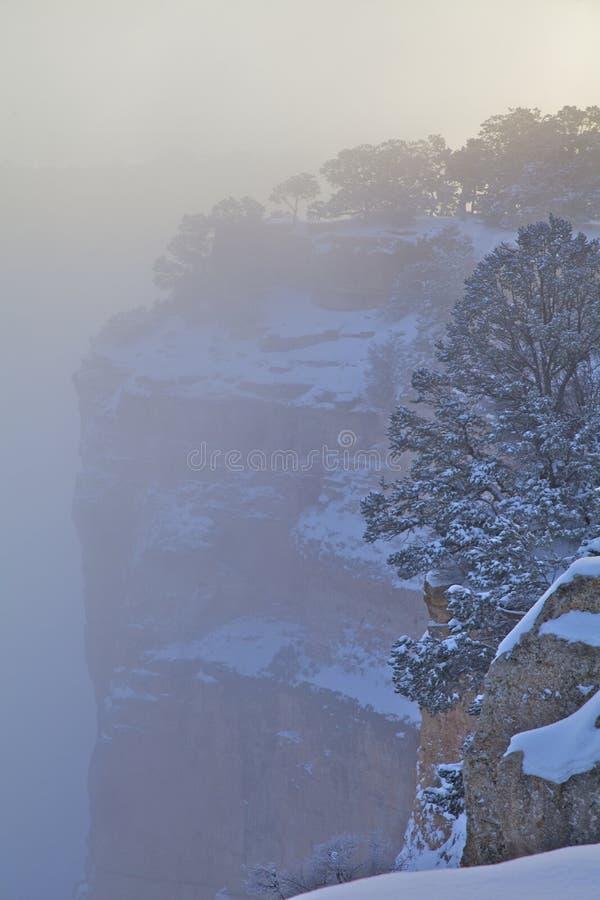 L Hiver De Canyon Grand Image libre de droits