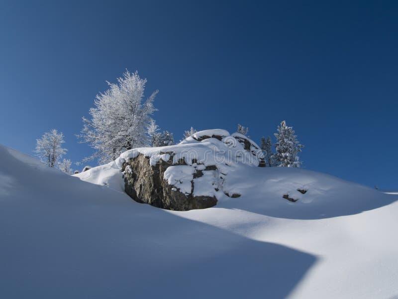 l'hiver de jour images stock