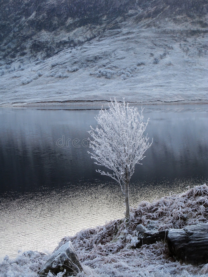 l'hiver de l'Ecosse de gorge de Garry photographie stock libre de droits