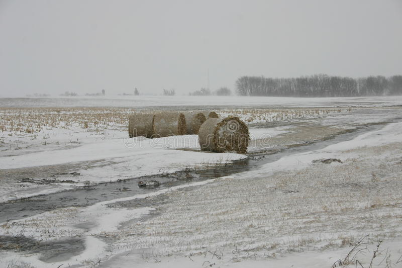 L'hiver de l'Iowa images stock