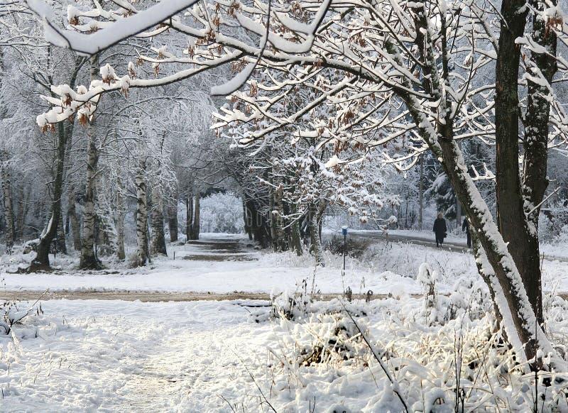 l'hiver de la ruelle s photos libres de droits