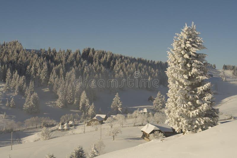 l'hiver de montagne d'horizontal image stock