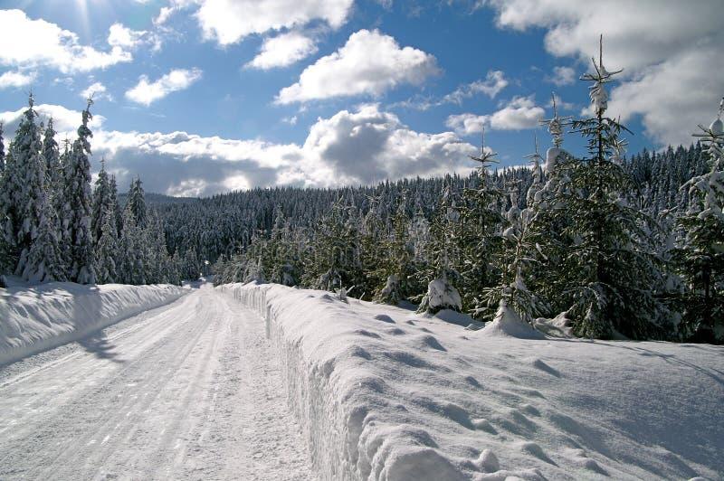 l'hiver de neige de chemin photos libres de droits
