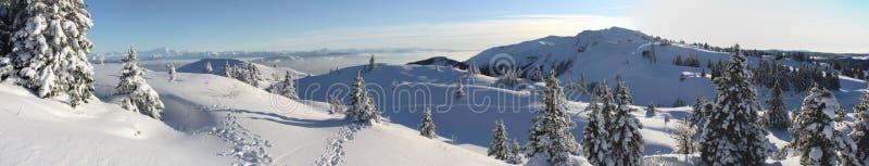 l'hiver de panorama images stock