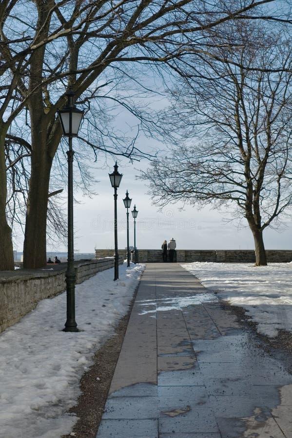 Download L'hiver de stationnement photo stock. Image du pays, horizontal - 8658830