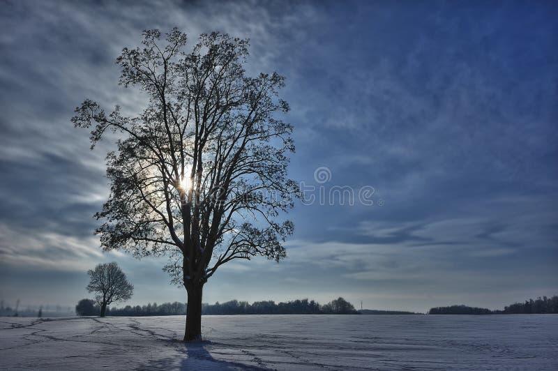 L'hiver en Allemagne image libre de droits