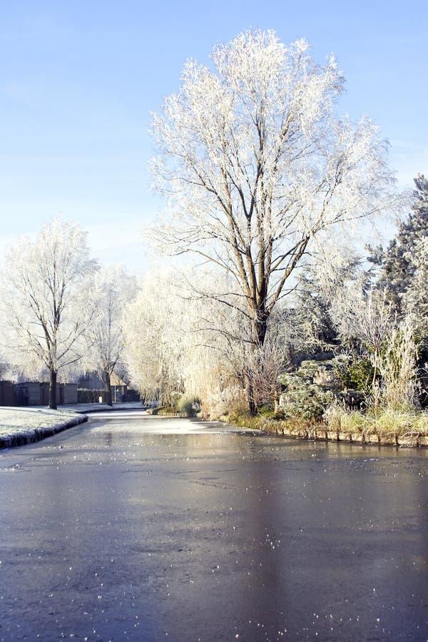 L'hiver en Hollande photos libres de droits