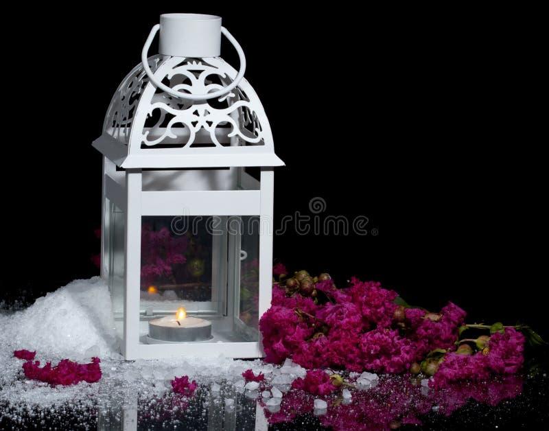 L'hiver en juillet image stock