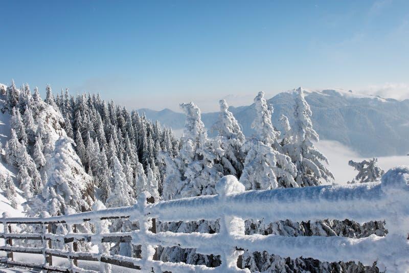 L'hiver en montagne roumaine image stock
