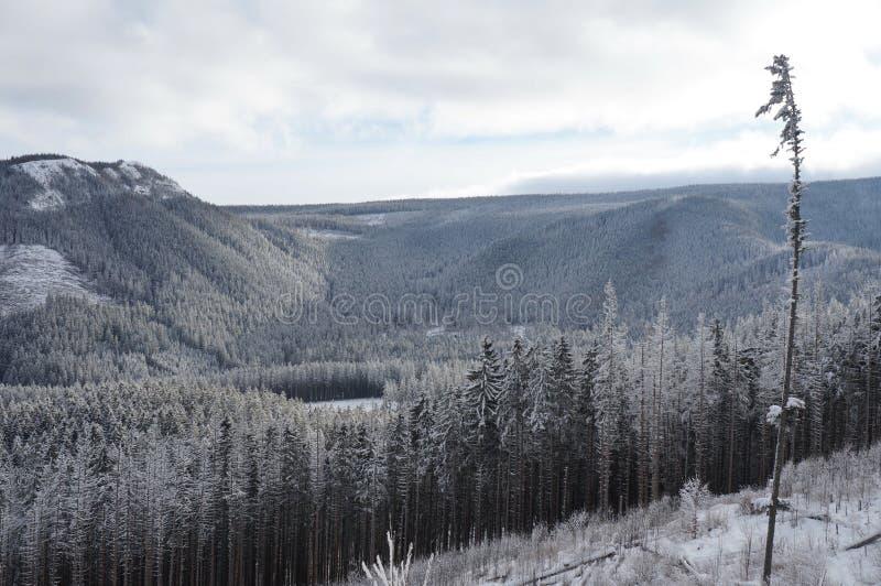 L'hiver en montagnes de Tatra image stock