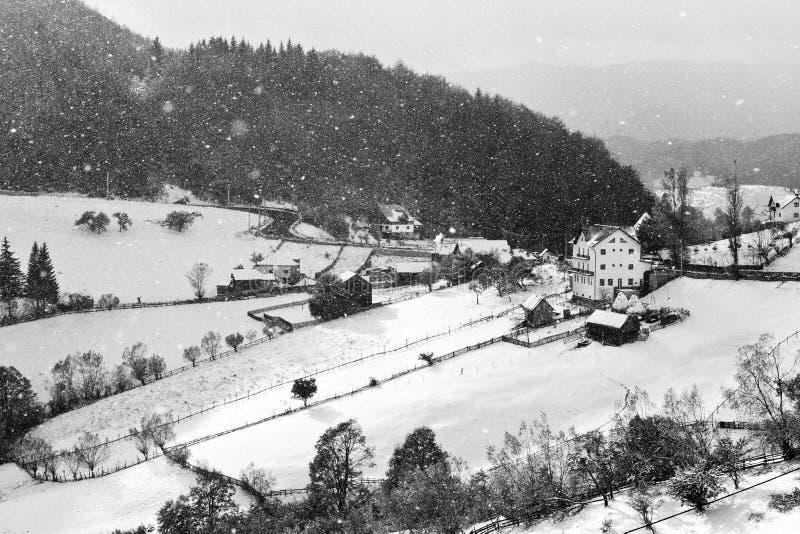 L'hiver en noir et blanc photos libres de droits