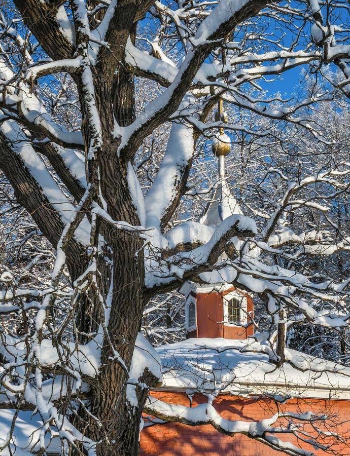 L'hiver en Russie photographie stock libre de droits