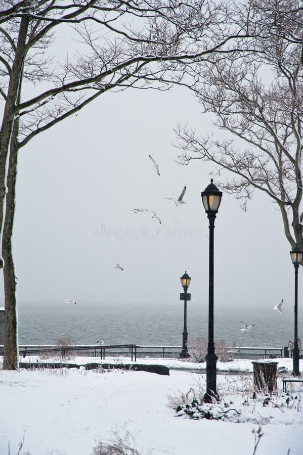L'hiver en stationnement image libre de droits
